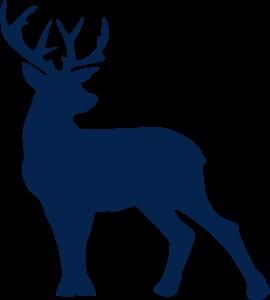 Buck SVG file