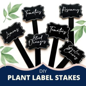 Plant Label Stakes