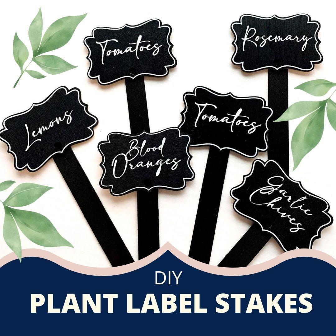 PlantLabelStakes