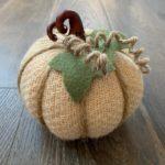 Sweater covered pumpkin