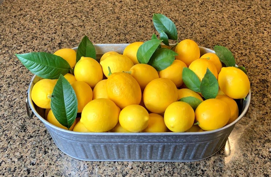 Bucket of Lemons